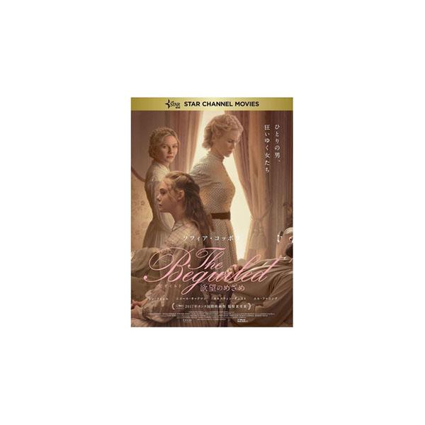The Beguiled ビガイルド 欲望のめざめ Blu-ray TCBD-0769男女 2017年 アメリカ【割引不可・返品キャンセル不可】