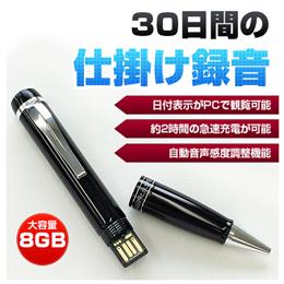 ベセトジャパン 仕掛録音30日ペン型ボイスレコーダー VR-P005N【取り寄せ品キャンセル返品不可、割引不可】
