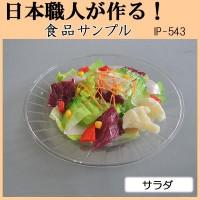 【大感謝価格】 日本職人が作る 食品サンプル サラダ IP-543 【返品キャンセル不可】