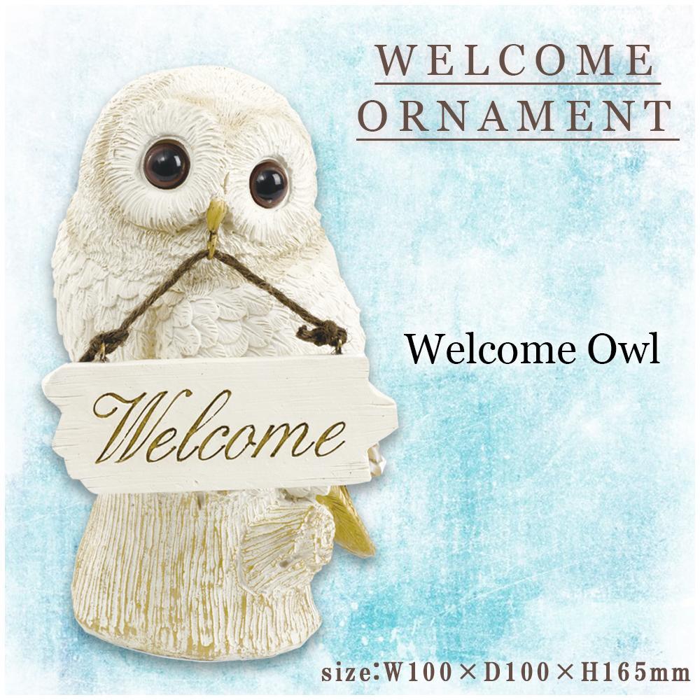 Herusi 99box Welcome Owl Ornament KH 61095