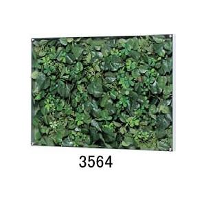 大感謝価格『薄型BOXフレーム ウォールグリーン 3564』『メーカー直送品。代引不可・同梱不可・返品キャンセル・割引不可』観葉植物 壁掛け ディスプレイ 飾る インテリア 雑貨 グッズ 薄型BOXフレーム ウォールグリーン 3564送料無料