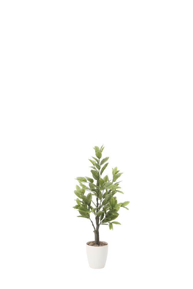 【メーカー直送・大感謝価格 】光触媒人工植物 光の楽園 2018 レモン1.0 818A150 W43×D43×H100cm