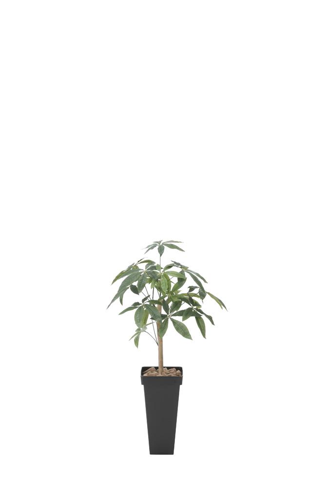 【メーカー直送・大感謝価格 】光触媒人工植物 光の楽園 2018 スリムパキラ1.0 826A120 W53×D50×H100cm