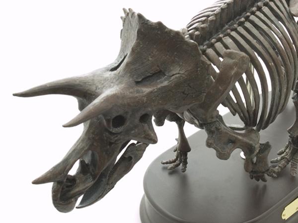 【メーカー直送・大感謝価格】恐竜 トリケラトプス スケルトンモデル FDS602 70101