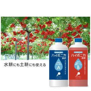 Mixed fertilizer gardening private vegetable garden life miscellaneous  goods Hyponica liquid fertilizer 5,000 yen tax-excluded 10P03Dec16 where an