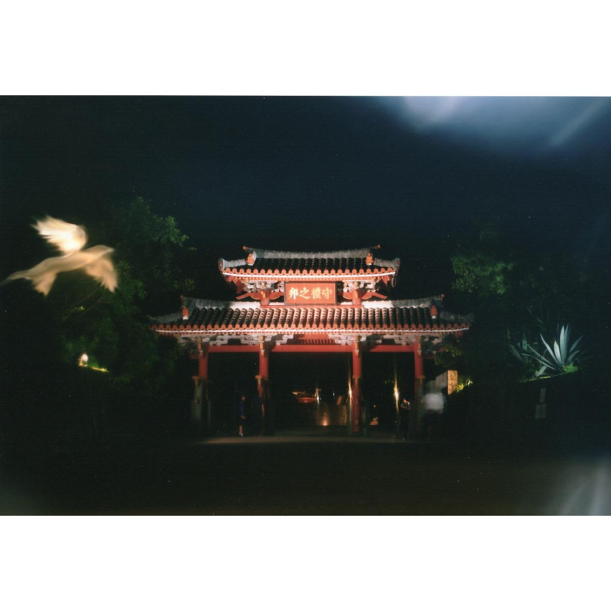 【大感謝価格 】奇跡の写真 秋元隆良 守礼門に金の鳥