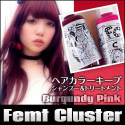 超过5000日元税另算美容化妆品化妆头发护理头发飞数簇(Femt Cluster)毛发染料保持10P03Dec16