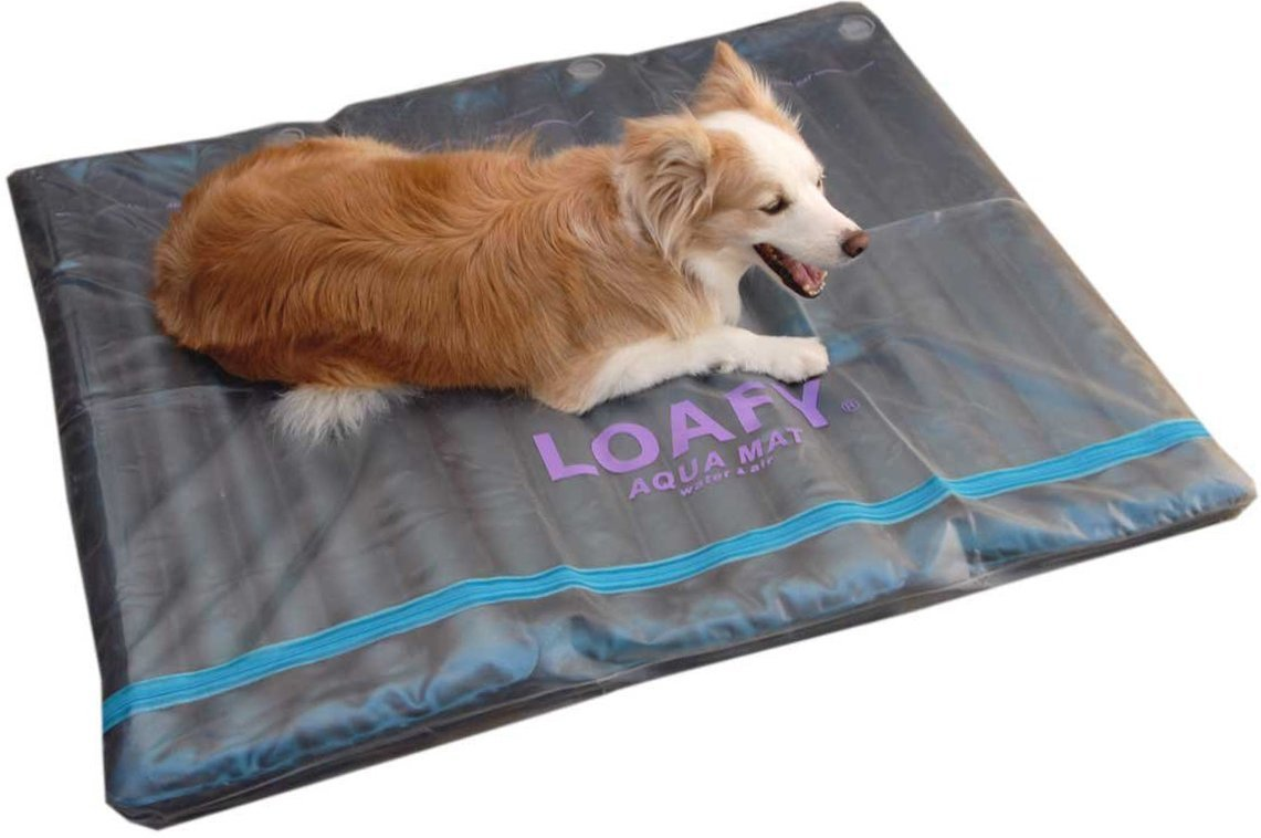DOGS 犬の ウォーターベッド 3L ( 介護 床ずれ 熱中症 予防 防止 体圧分散 エコクール&ウォーム 老犬 ベッド 犬のひんやりマット)