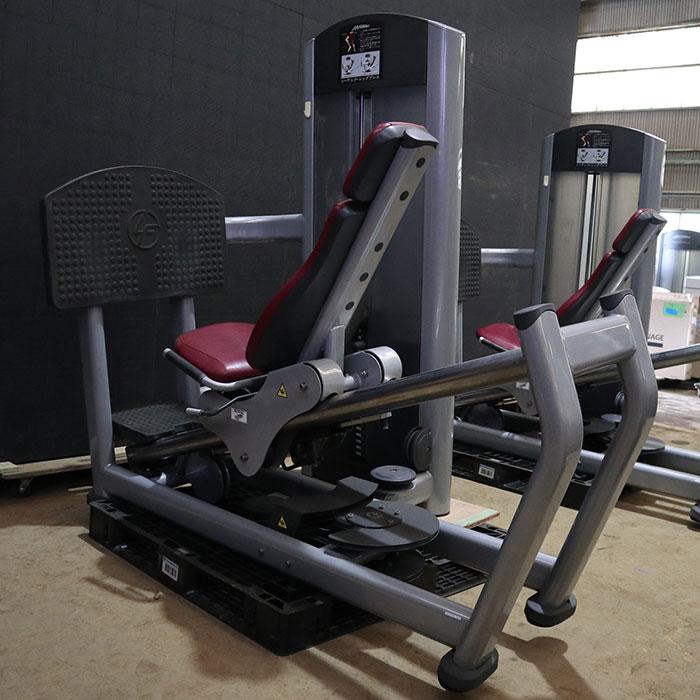 ライフフィットネス シーテッド・レッグプレス FZSLP ジム エクササイズ フィットネス トレーニング マシン 【中古】