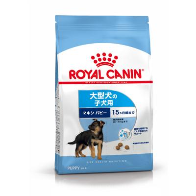 店頭受取対応商品 生後15ヵ月齢までの大型犬子犬用 ロイヤルカナン マキシ パピー 4kg 半額 祝日