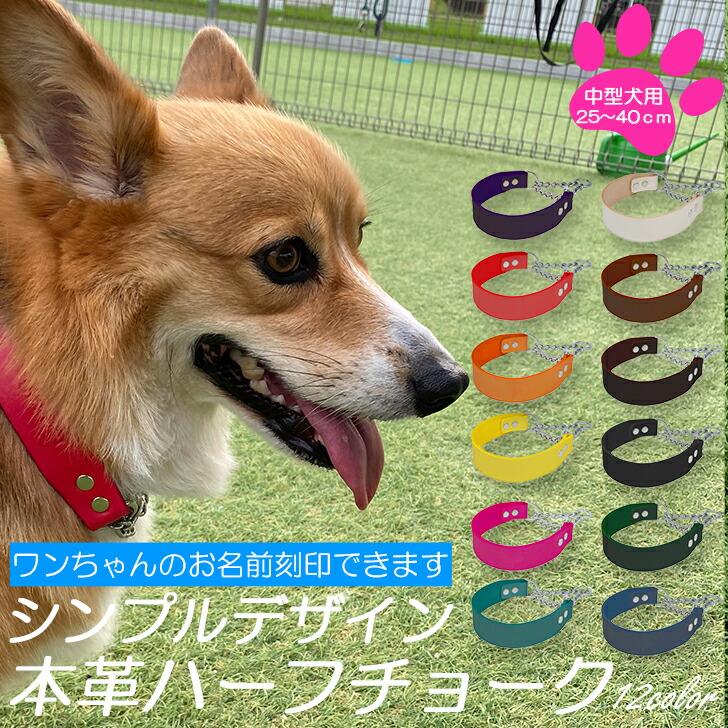 送料無料 犬 首輪 名入れ 中型犬 ハーフチョーク 卓抜 レザー 本革 犬の首輪 いぬ くびわ 名前刻印 しつけ 訓練 皮 スーパーSALE10%OFF かわいい 散歩 シンプルデザイン 全12色 ぺぐすのはふちょ WEB限定 革 ポイント5倍 おしゃれ 犬首輪 犬用品 日本製 犬用