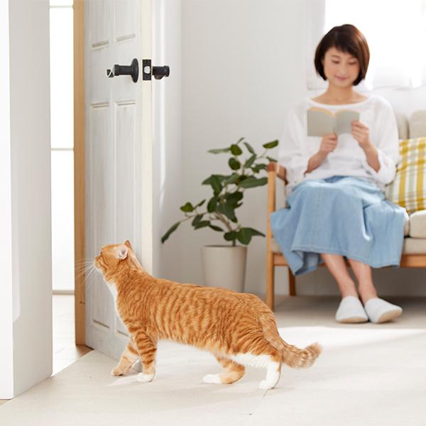 わん・にゃんフリーパス 犬 猫 ペットドア 犬用ドア 猫用ドア 冷暖房対策 ペット PEPPY ペピイ
