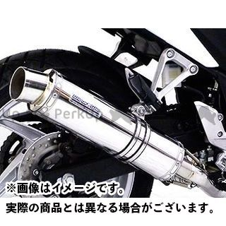 WirusWin CBR250R マフラー本体 CBR250R(JBK-MC41)用 スリップオンマフラー スポーツタイプ【JMCA認証】 サイレンサー:ステンレス仕様 ウイルズウィン