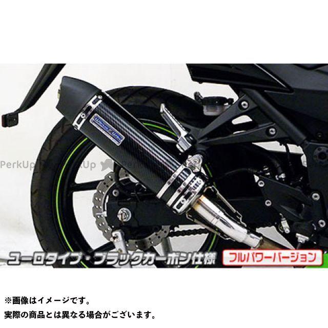 WirusWin ニンジャ250R マフラー本体 Ninja250R(JBK-EX250K)用スリップオンマフラー ユーロタイプ フルパワーバージョン サイレンサー:ステンレス仕様 ウイルズウィン