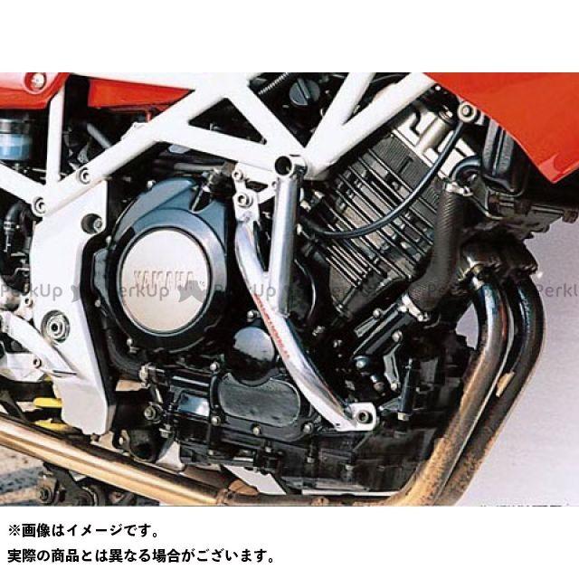 GOLD MEDAL TRX850 エンジンガード スラッシュガード ブルー