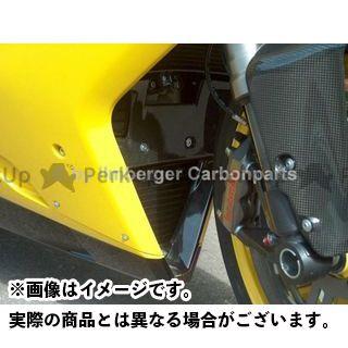 ILMBERGER その他外装関連パーツ Ducati 848/1098/1198/1098S/1098R/1198S用 Vパネル イルムバーガー