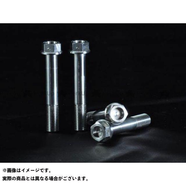 【特価品】AELLA モンスター1100S その他外装関連パーツ チタンボルト Fキャリパーラジアルマウント(チタン) アエラ