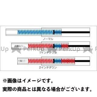 PROGRESSIVE ドラッグスター1100(DS11) ドラッグスター400(DS4) 車高調整キット フロントロワリングキット  プログレッシブ