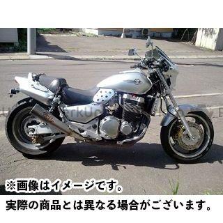WW カウル・エアロ 汎用ビキニカウル DS-01 typeR(フォースシルバーメタリック) ワールドウォーク