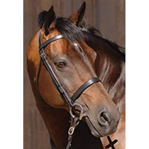 (カルデネ) Caldene ブライドル 馬勒 プレーン 手綱付き 乗馬 ホースライディング 【海外直送】