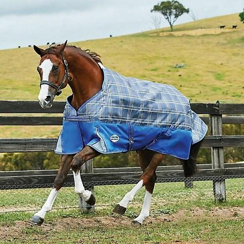 (ウェザビータ) Weatherbeeta 馬用 Comfitec ライト プレミア フリー スタンダードネック ターンアウトラグ 馬着 乗馬 ホースライディング 【海外直送】