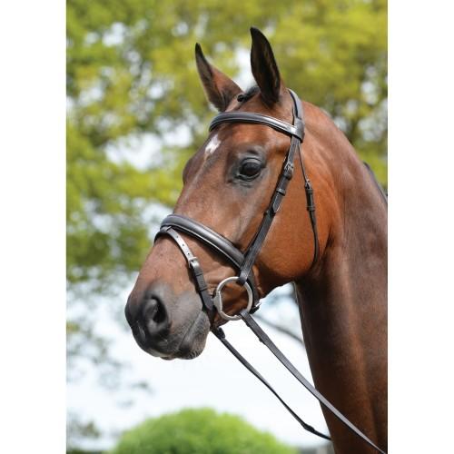 (キンケード) Kincade 馬用 レザー パッド入り ヘッドピース フラッシュブライドル 頭絡 馬具 乗馬 ホースライディング 【海外直送】