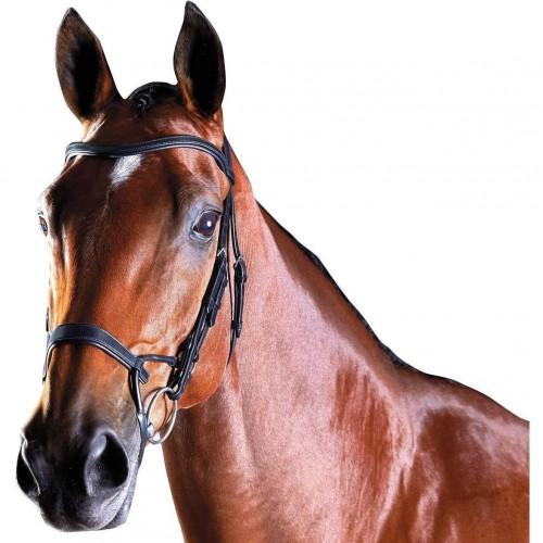 (カレッジエイト) Collegiate 馬用 Comfitec レザー トレーニング ブライドル 頭絡 馬具 乗馬 ホースライディング 【海外直送】