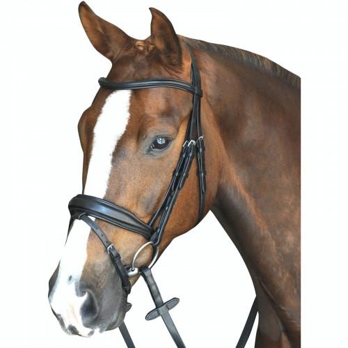 (カレッジエイト) Collegiate 馬用 Mono Crown パッド入り 厚みのあるレザー フラッシュ ブライドル 頭絡 馬具 乗馬 ホースライディング 【海外直送】