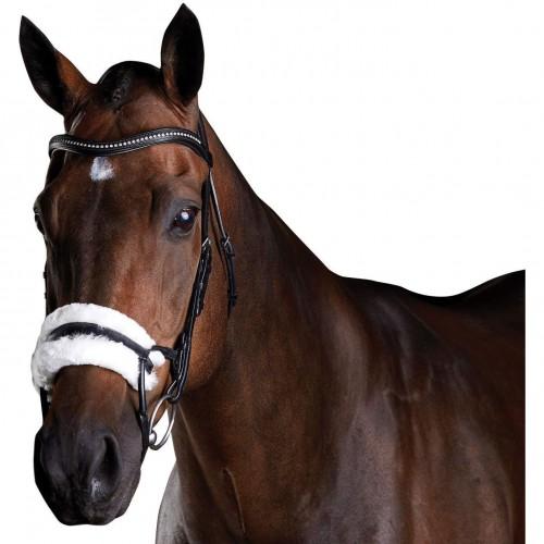 (カレッジエイト) Collegiate 馬用 Comfitec シープスキン レザー ブライドル 頭絡 馬具 乗馬 ホースライディング 【海外直送】
