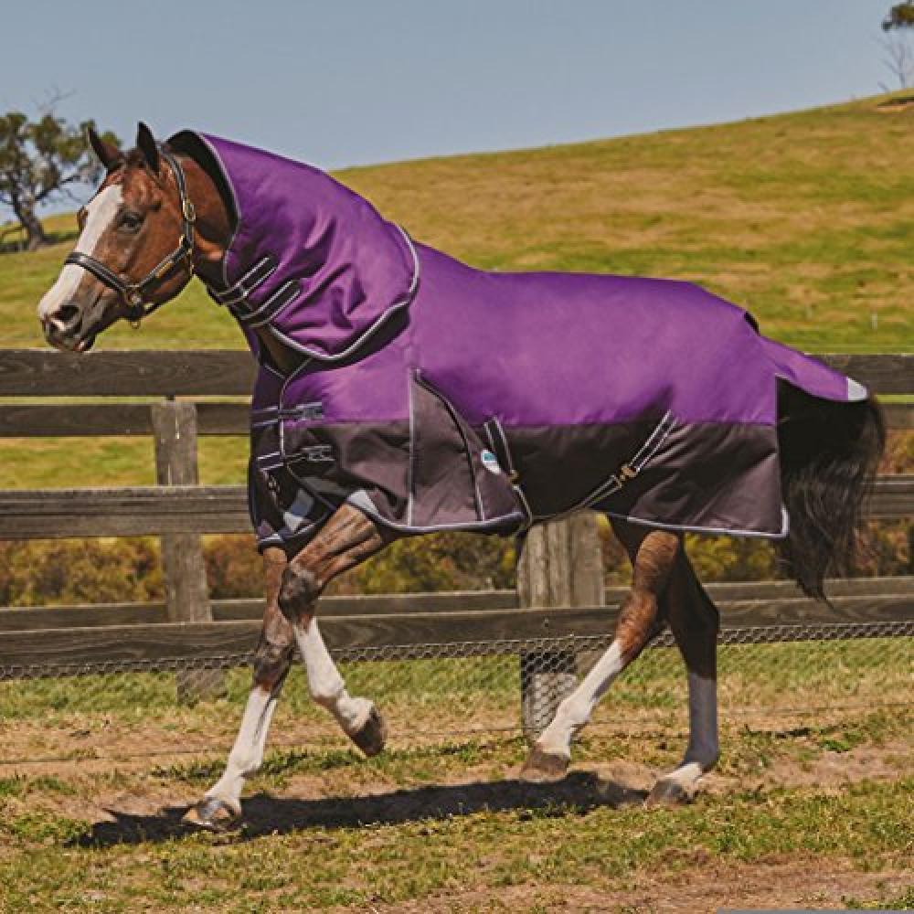 (ウェザビータ) Weatherbeeta 馬用 Comfitec ヘビー プラス ダイナミック ネックが外せる ターンアウトラグ 馬着 乗馬 ホースライディング 【海外直送】