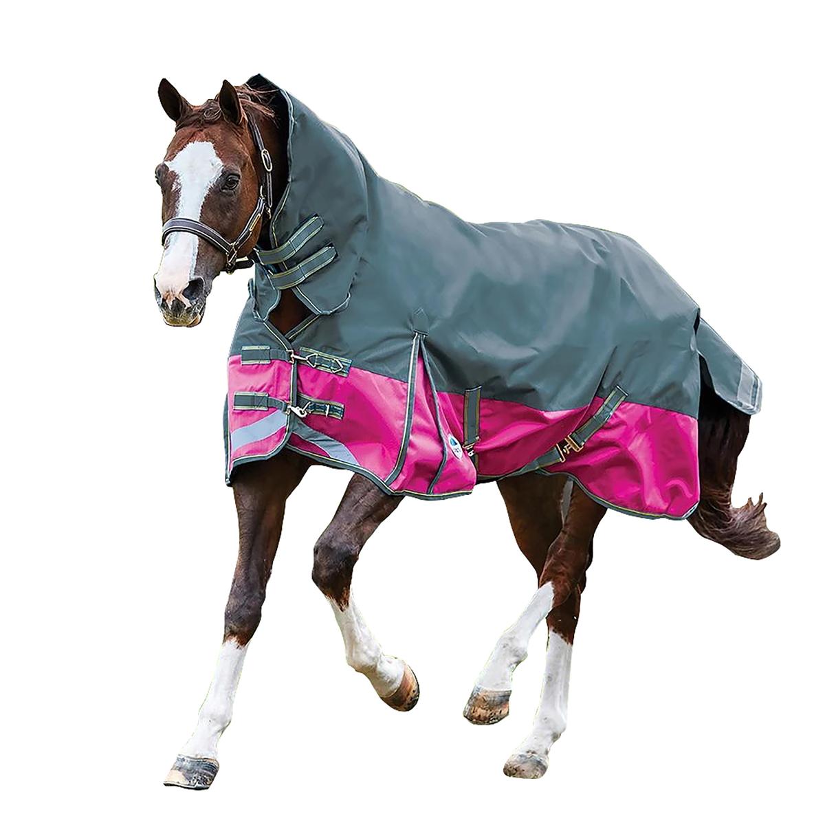 (ウェザビータ) Weatherbeeta 馬用 Comfitec プラスライト ダイナミック コンボネック ターンアウトラグ 馬着 乗馬 ホースライディング 【海外直送】