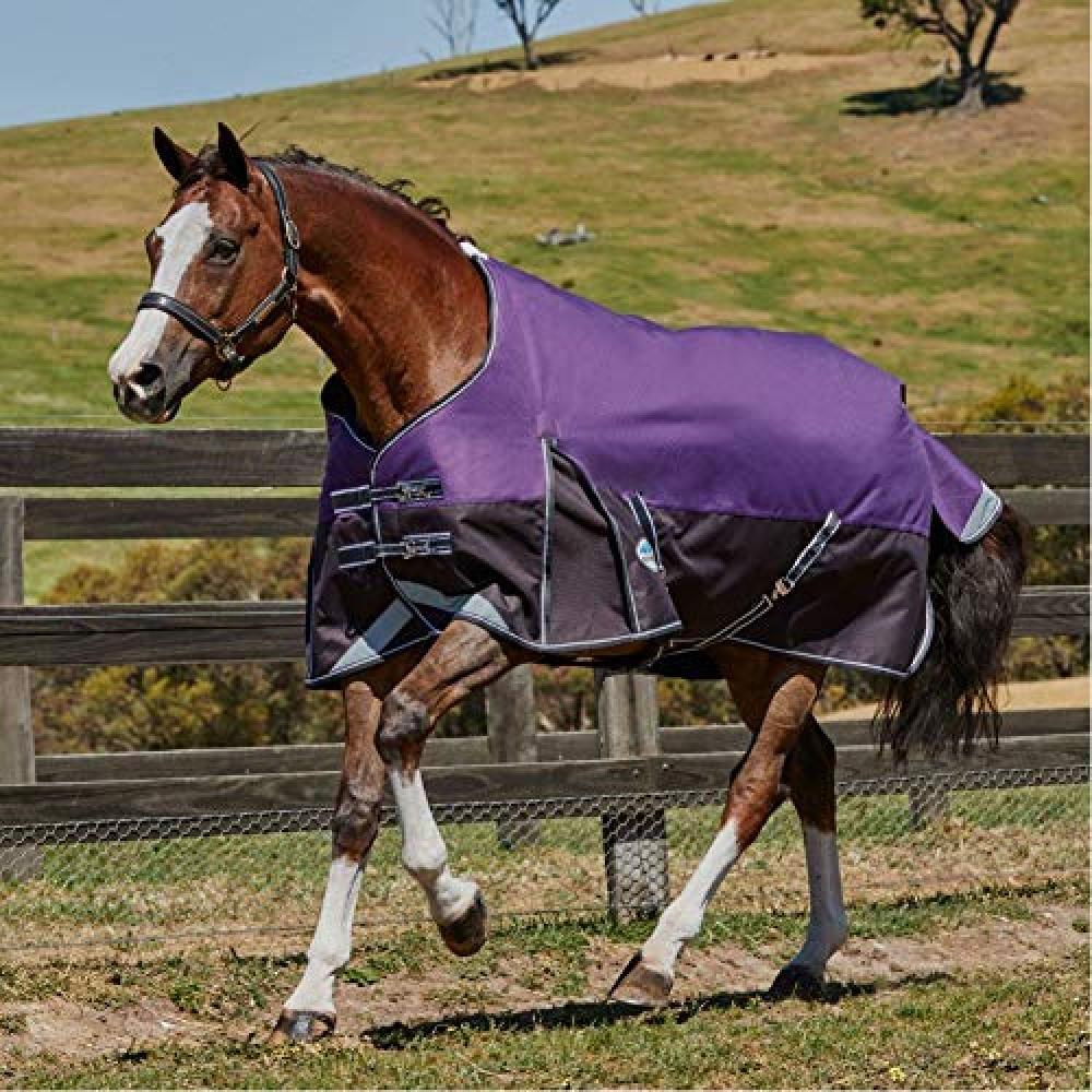 (ウェザビータ) Weatherbeeta 馬用 Comfitec プラス ミディアム/ライト ダイナミック スタンダードネック ターンアウトラグ 馬着 乗馬 ホースライディング 【海外直送】