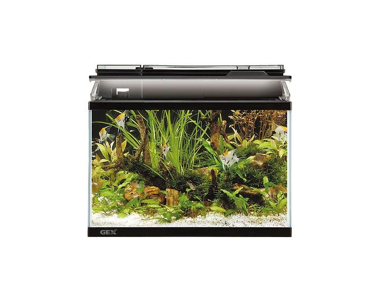 【飼育用品・器具】【水槽】GEX マリーナ450 LEDセット(淡水 海水用)