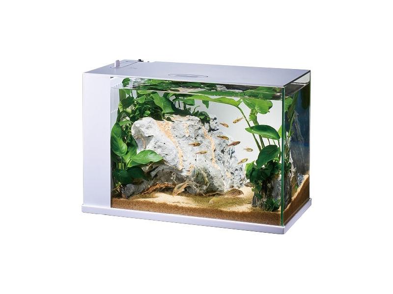 【飼育用品・器具】【水槽】GEX ラクテリア ホワイト(淡水 海水用)