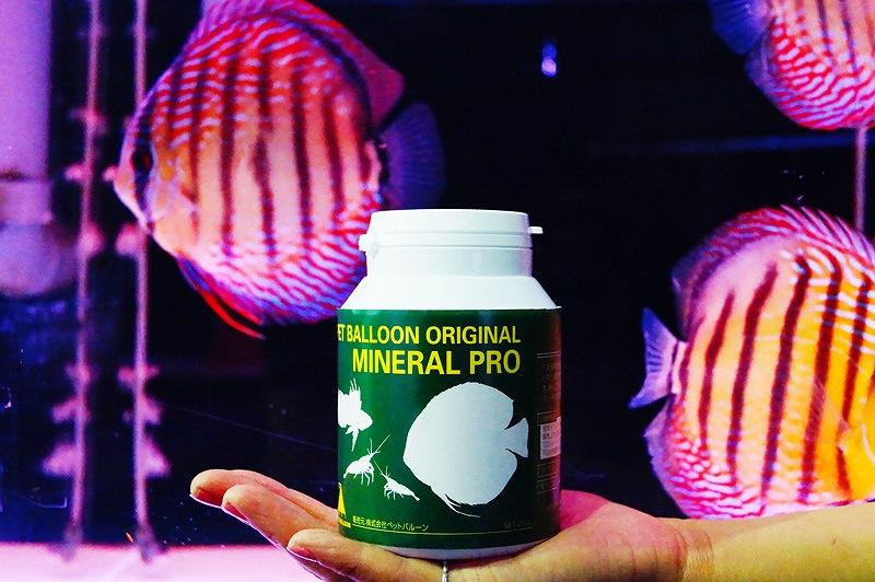 【飼育用品・添加剤】 ミネラルプロ(250g) 2個セット(淡水用)(添加剤)