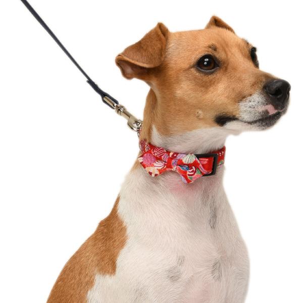犬用首輪 紙風船 和柄<単品><Mサイズ>小型犬 小型犬用 和風