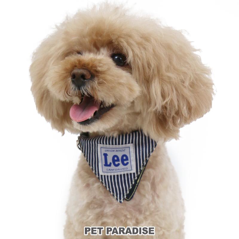 犬用品 ペットグッズ お散歩 ペットパラダイス クーポン利用で300円OFF 犬 首輪 Lee SS ロゴ リー おしゃれ おさんぽ 使い勝手の良い オシャレ メール便可 おでかけ かわいい 買い取り 小型犬 お出掛け