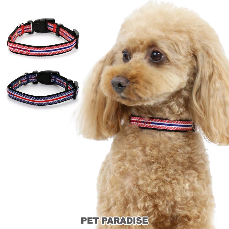 犬用品 ペットグッズ お散歩 ペットパラダイス 犬 セール 犬 首輪 【SS】ロゴ ボーダー   SALE 小型犬 くびわ おさんぽ おでかけ お出掛け おしゃれ オシャレ かわいい 【返品交換不可】 アウトレット メール便可