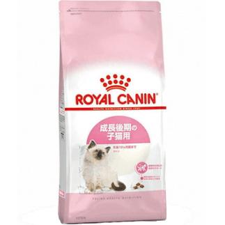 【お取り寄せ品】ロイヤルカナンFHN キトン(成長後期の子猫用) 10kg
