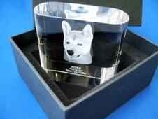 ペット用クリスタル位牌3Dキューブ【角型LEDライト単三電池付き】