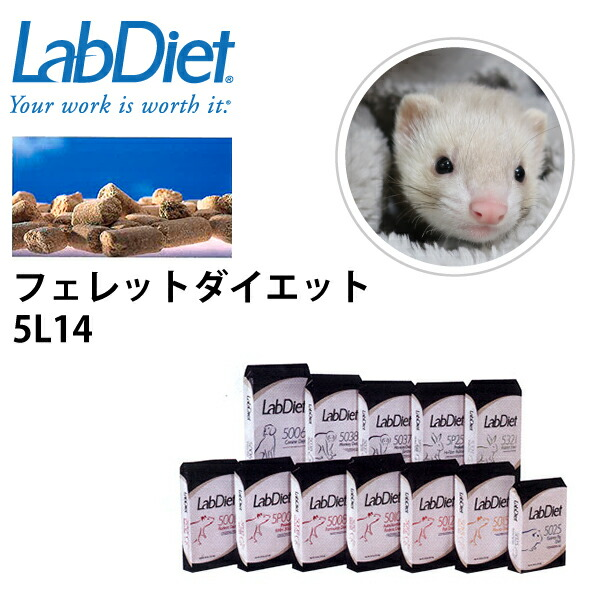 【増税による値上げはしていません】LabDiet ラボダイエット フェレットダイエット フード 15kg フェレット ペレット 小動物 ブリーダー エサ 送料無料【JPS】