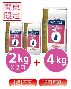◆【あす楽対応】【送料無料】【関東限定】【代引き不可】【2kg×2+4kg】ロイヤルカナン ベッツプラン猫用 フィーメールケア