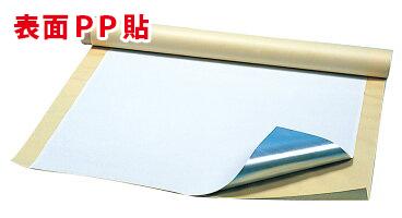 スチールペーパー 通常便なら送料無料 表面コート紙 PPフィルム貼 直営ストア 0.2mm×900mm×6M SPPTP 裏面粘着材