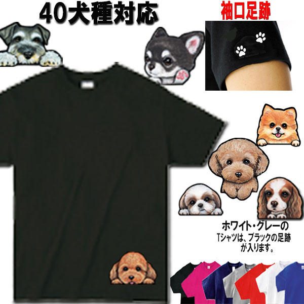 Pomeranian shirt dog breed t-shirt men/'s t-shirt black tee white design