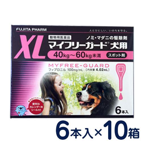 マイフリーガード 犬用 XL(40~60kg) 6本入り×10個セット [ノミ・マダニ駆除剤]
