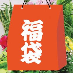 【ご予約品】■お得な福袋■インドアガーデニング園芸福袋シンビジウム・鉢花・コニファー・観葉などなど