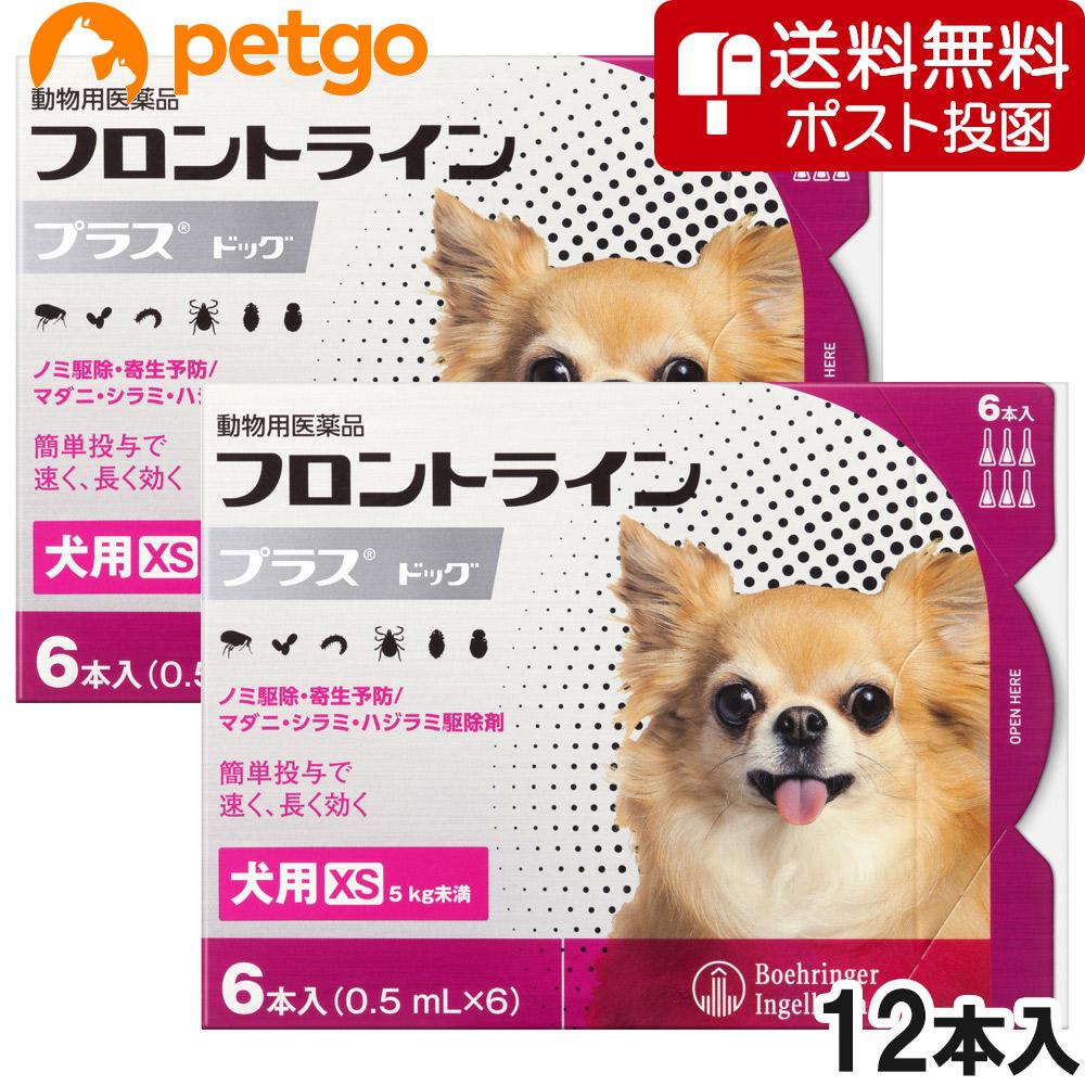 ネコポス 同梱不可 人気商品 2箱セット 犬用フロントラインプラスドッグXS あす楽 5kg未満 商品追加値下げ在庫復活 6本 動物用医薬品