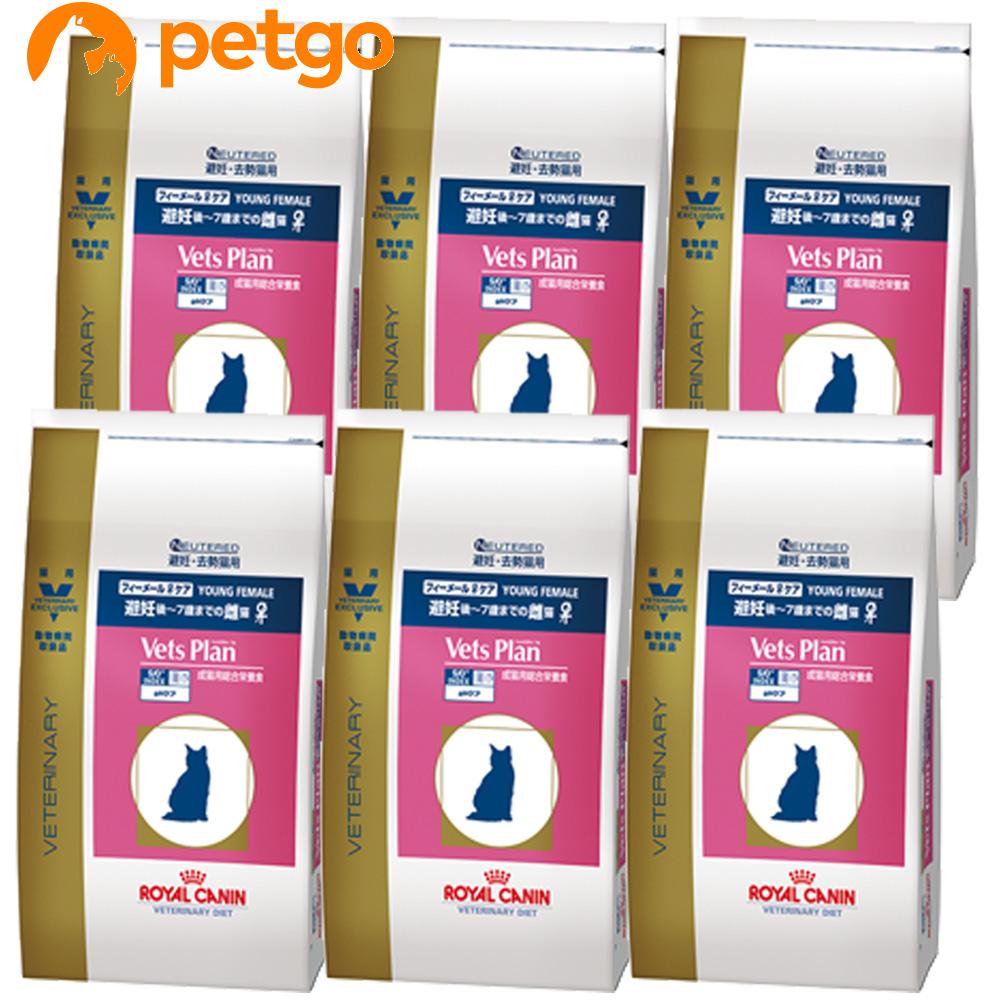 ロイヤルカナン 最安値に挑戦 ベッツプラン 猫用 フィーメールケア 2kg×6袋 定番の人気シリーズPOINT ポイント 入荷 ケース販売 あす楽