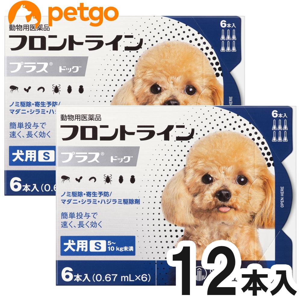 2箱セット アイテム勢ぞろい 犬用フロントラインプラスドッグS 5~10kg 6本 日本正規代理店品 動物用医薬品 あす楽 6ピペット