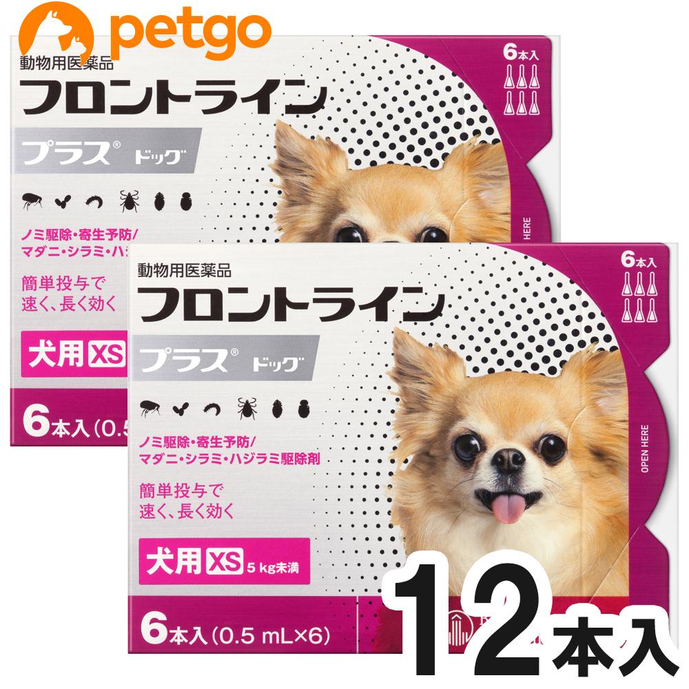 日時指定 2箱セット 犬用フロントラインプラスドッグXS 5kg未満 日本メーカー新品 6本 動物用医薬品 6ピペット あす楽